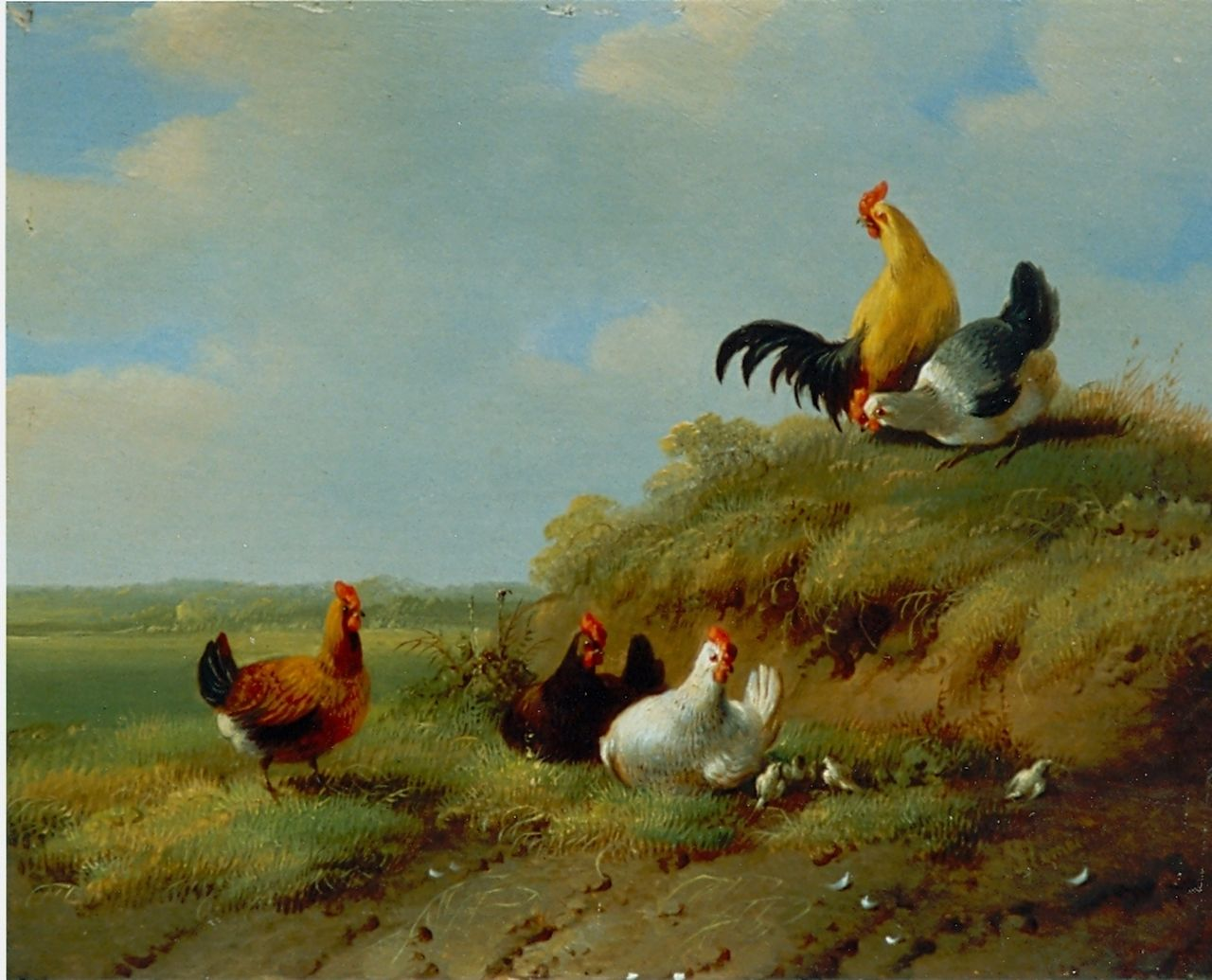 Verhoesen A.  | Albertus Verhoesen, Chickens and rooster, oil on panel 14.0 x 13.6 cm, signed l.r.
