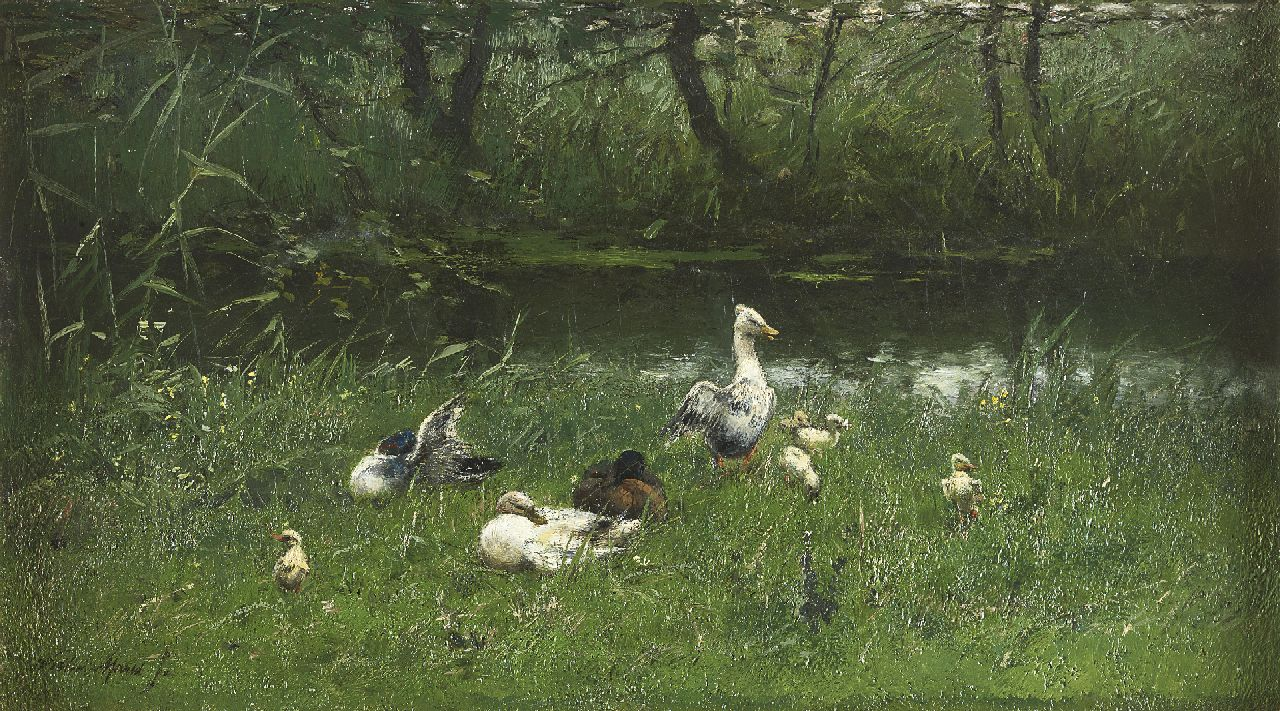 Maris W.  | Willem Maris, Ducks and ducklings by the waterside, oil on canvas 23.5 x 41.3 cm, signed l.l.