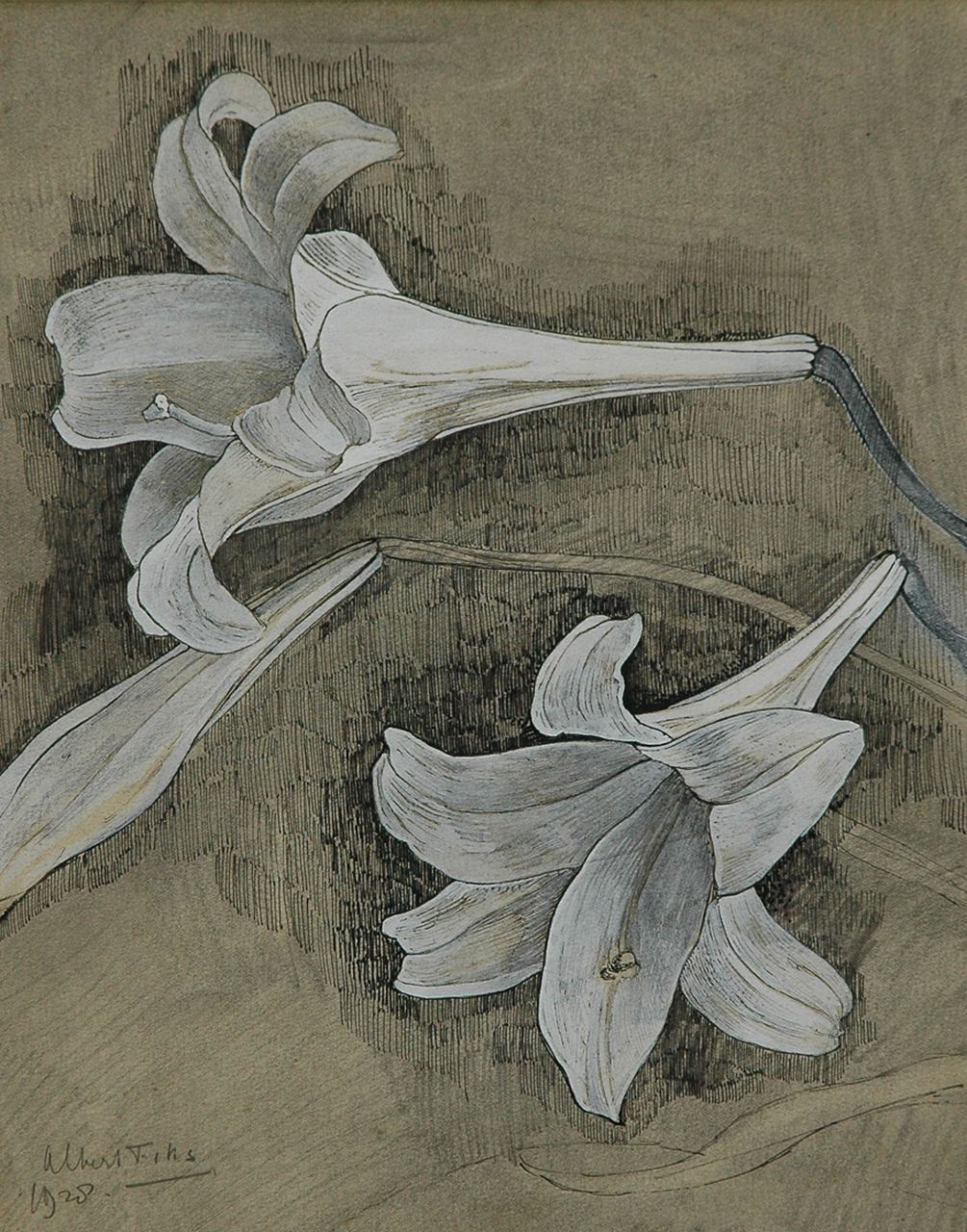 Fiks A.  | Albert Fiks, White lily flowers, pen, ink and gouache on paper 29.5 x 23.4 cm, signed l.l. and dated 1928
