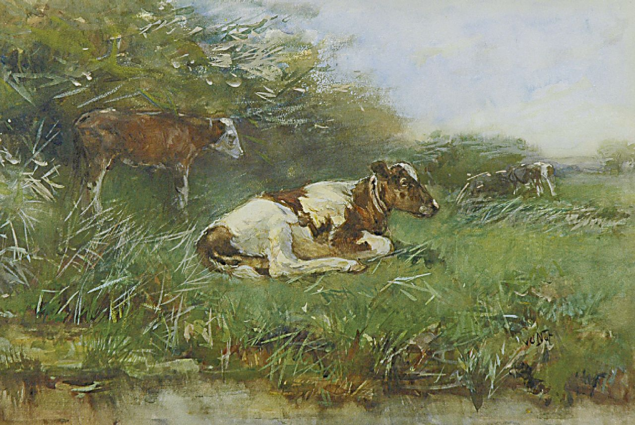 Nat W.H. van der | 'Willem' Hendrik van der Nat, Calfs in a pasture, watercolour on paper 33.3 x 49.6 cm, signed l.r.