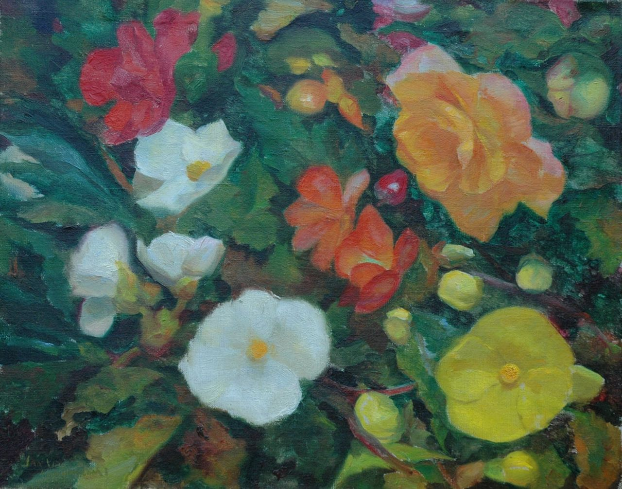 Jan Visser | Begonias, oil on canvas, 40.2 x 50.1 cm, signed l.l.