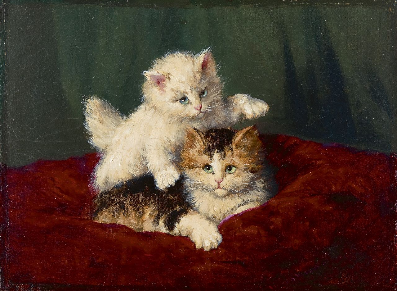 Jozef Gindra | Two kittens playing, oil on canvas, 31.2 x 42.3 cm, signed l.r.