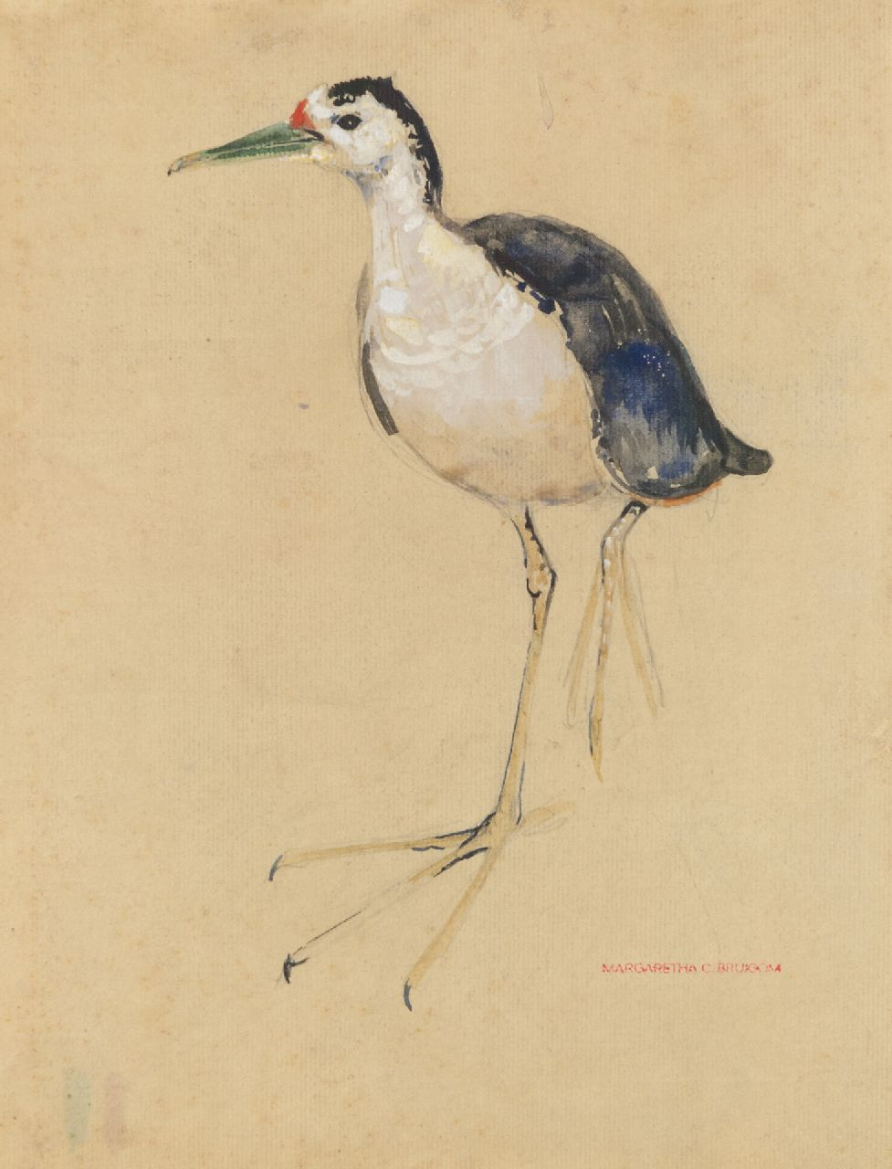 Bruigom M.C.  | Margaretha Cornelia 'Greta' Bruigom | Watercolours and drawings offered for sale | A wader, watercolour on paper 31.3 x 24.6 cm, signed l.r. with the artists stamp