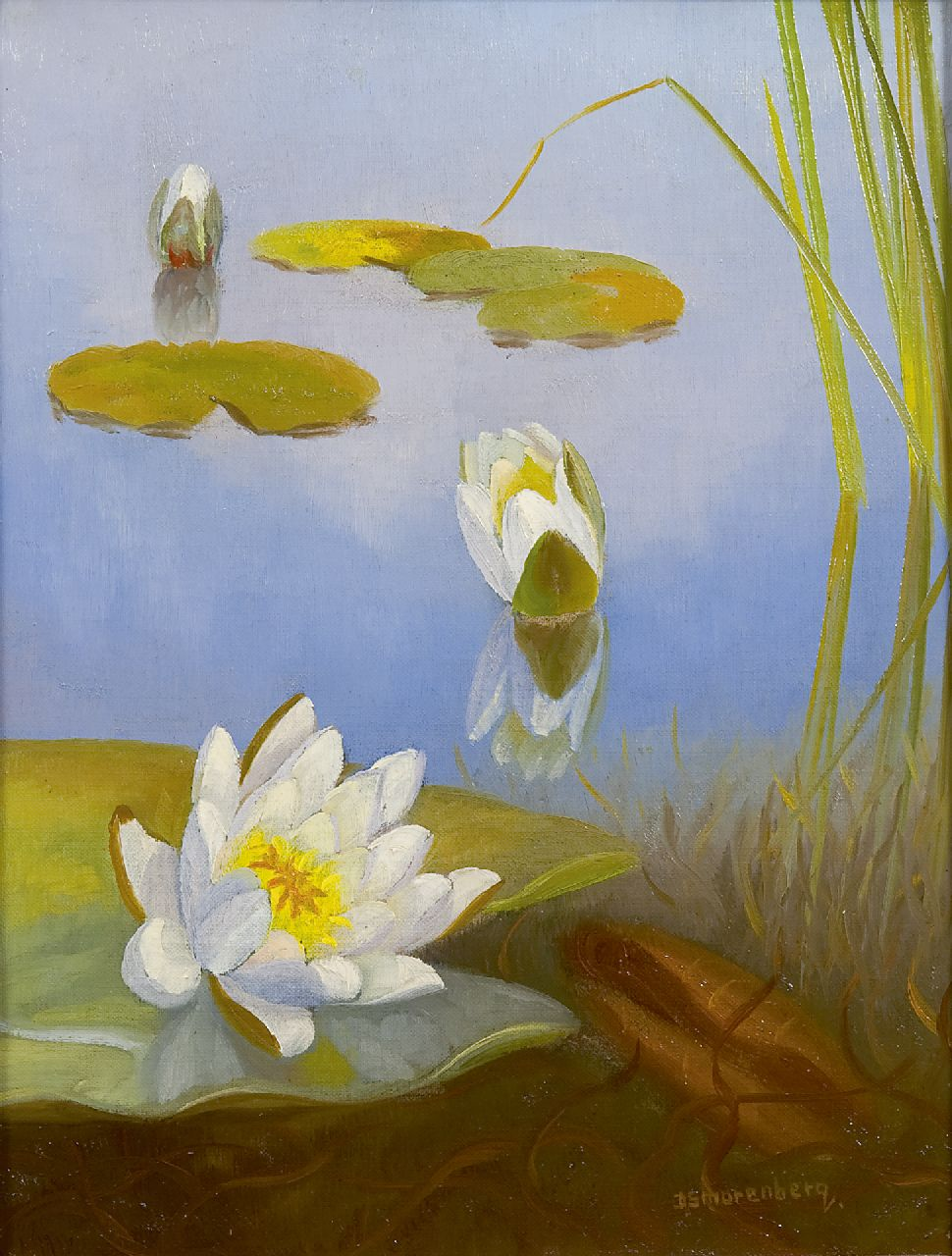 Smorenberg D.  | Dirk Smorenberg, Waterlilies, oil on canvas 32.2 x 25.2 cm, signed l.r.