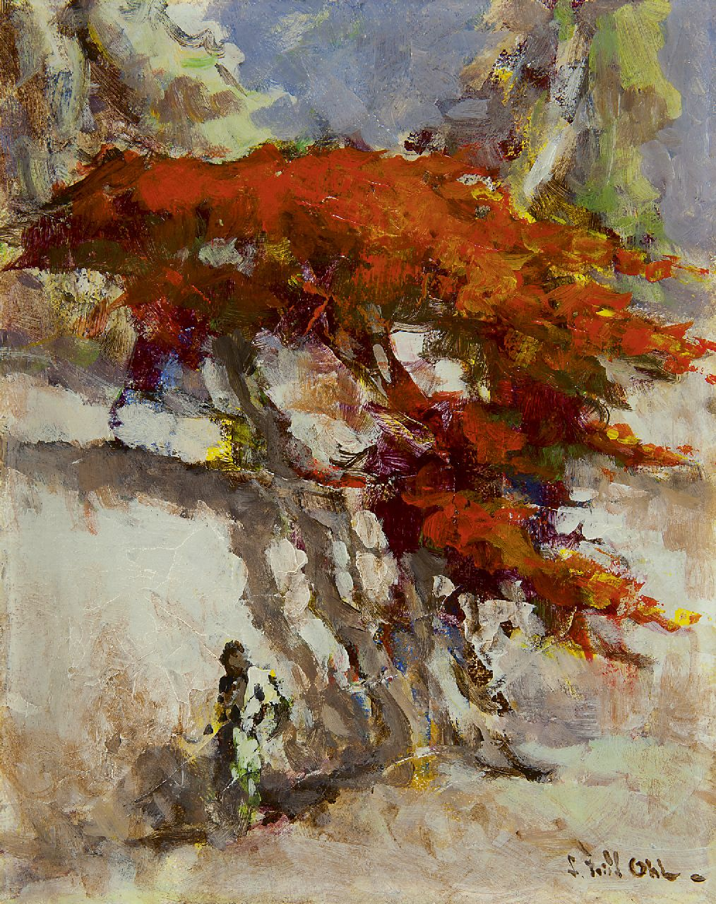 Frits Ohl | Flame tree by a white wall, oil on board, 29.9 x 24.0 cm, signed l.r.