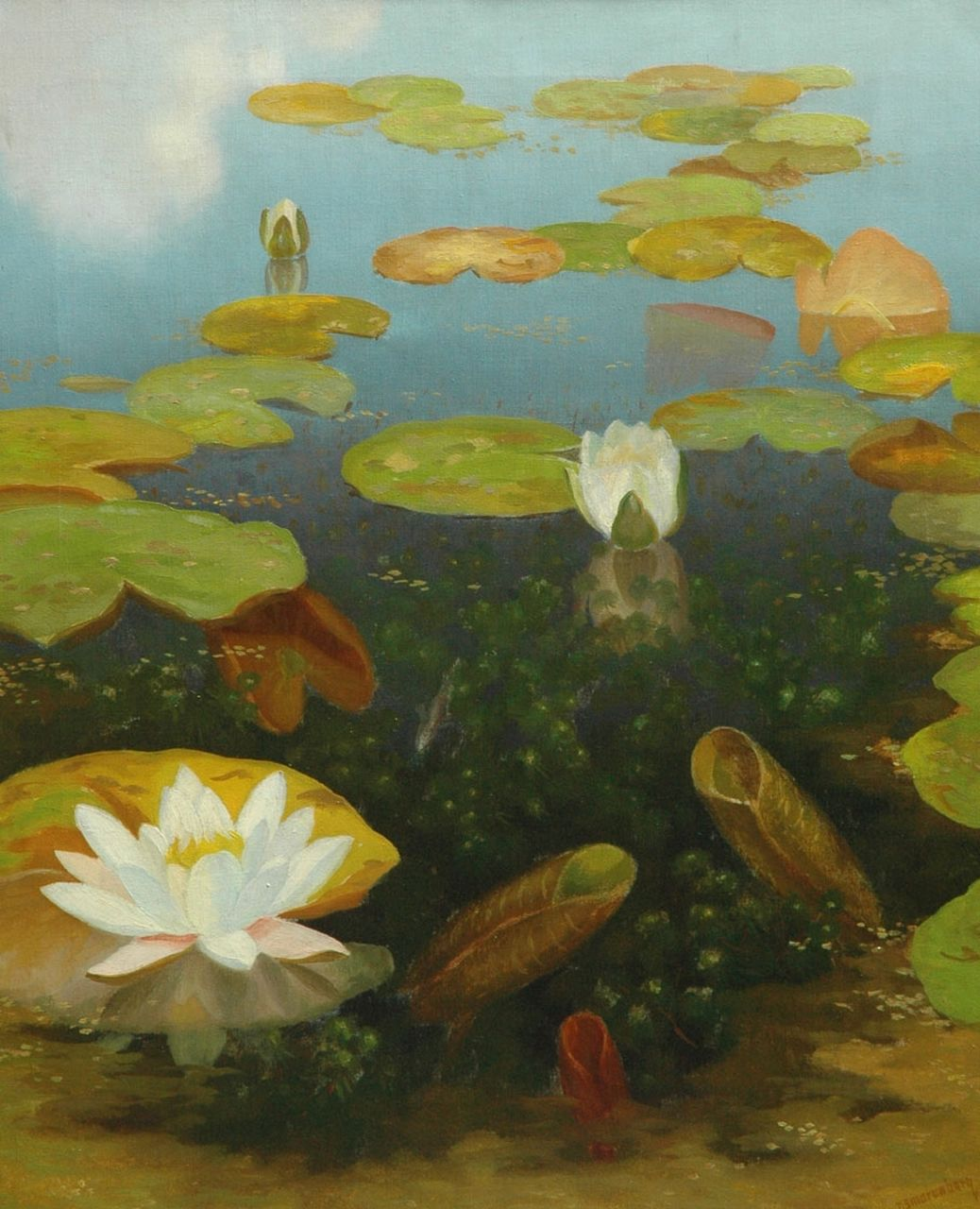 Smorenberg D.  | Dirk Smorenberg, Water lilies, oil on canvas 59.8 x 49.8 cm, signed l.r.