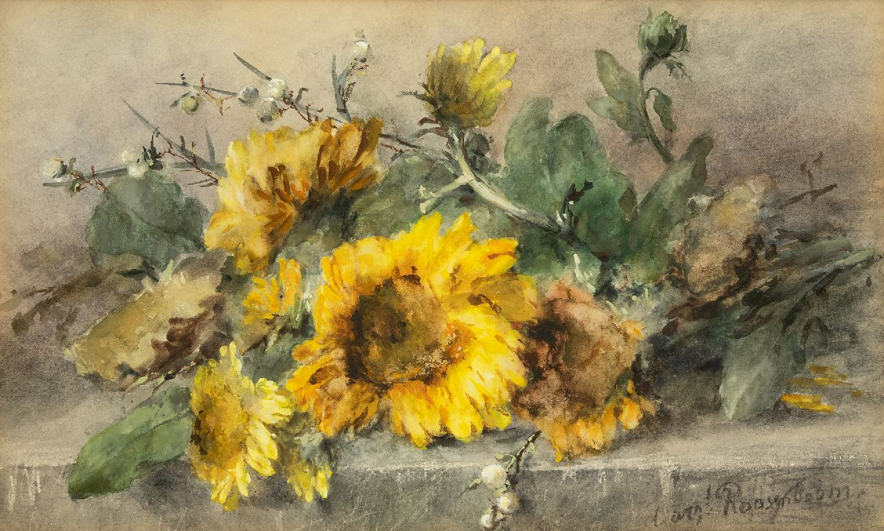 Roosenboom M.C.J.W.H.  | 'Margaretha' Cornelia Johanna Wilhelmina Henriëtta Roosenboom | Watercolours and other works on paper offered for sale | Sunflowers on a stone ledge, watercolour on paper 44.3 x 74.8 cm, signed l.r.