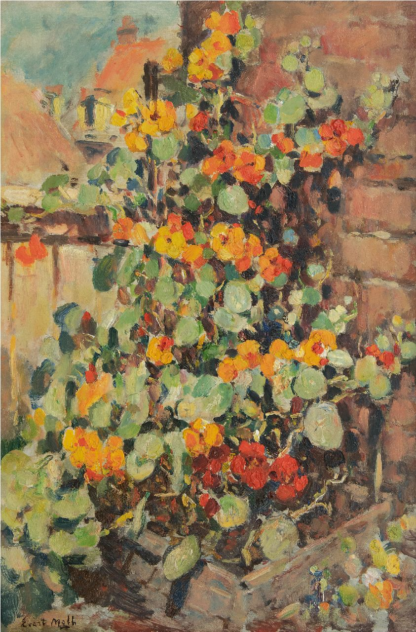 Moll E.  | Evert Moll, Nasturtium, oil on canvas 60.1 x 40.0 cm, signed l.l.