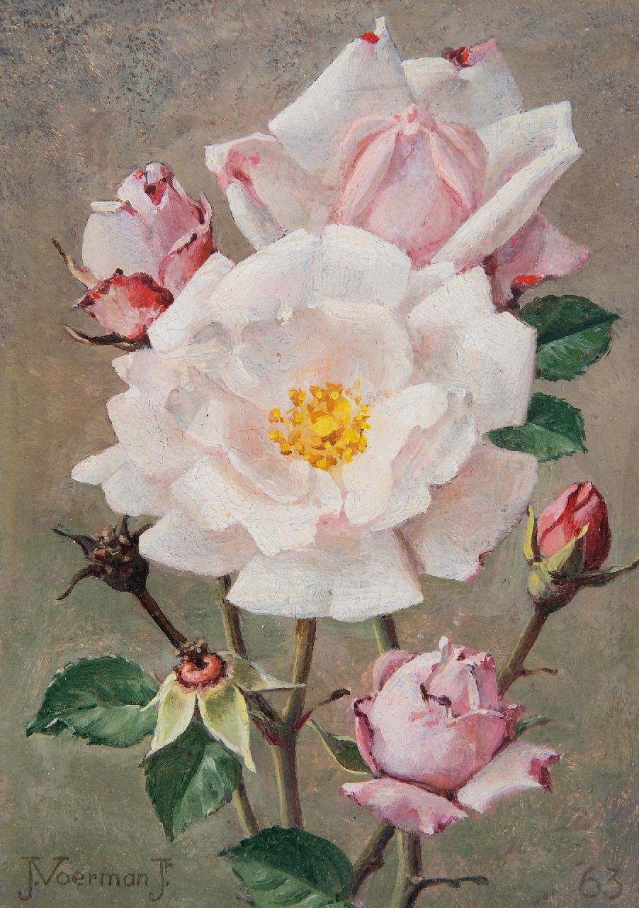 Voerman jr. J.  | Jan Voerman jr. | Paintings offered for sale | Pink roses, oil on board 18.0 x 12.7 cm, signed l.l. and dated '63