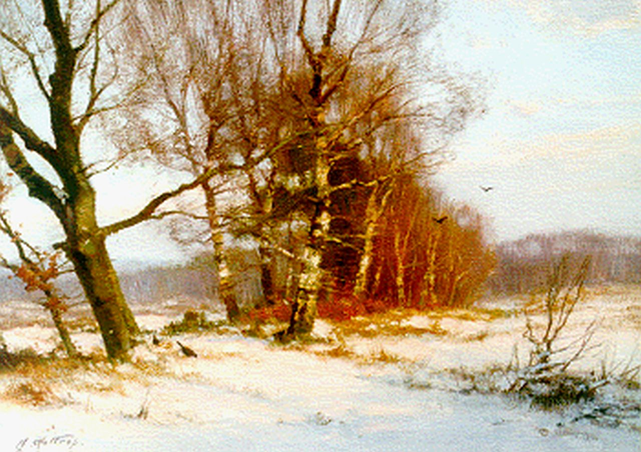 Holtrup J.  | Jan Holtrup, 'Imbos' in winter, Veluwe, oil on canvas 30.0 x 40.4 cm, signed l.l.