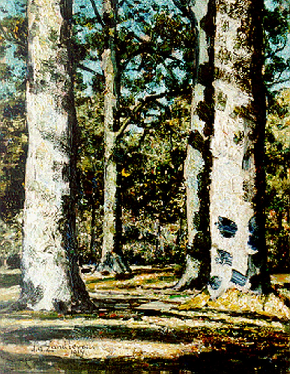 Zandleven J.A.  | Jan Adam Zandleven, A sunlit wooded landscape, oil on canvas laid down on painter's board 41.0 x 32.0 cm, signed l.l. and dated 1914