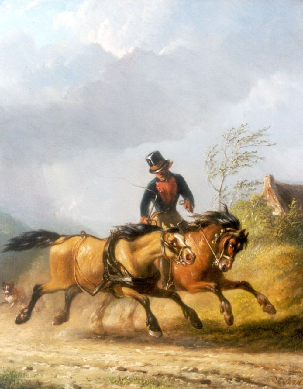 Os P.F. van | Pieter Frederik van Os, Untameable horse, oil on panel 30.0 x 24.5 cm, signed l.r.