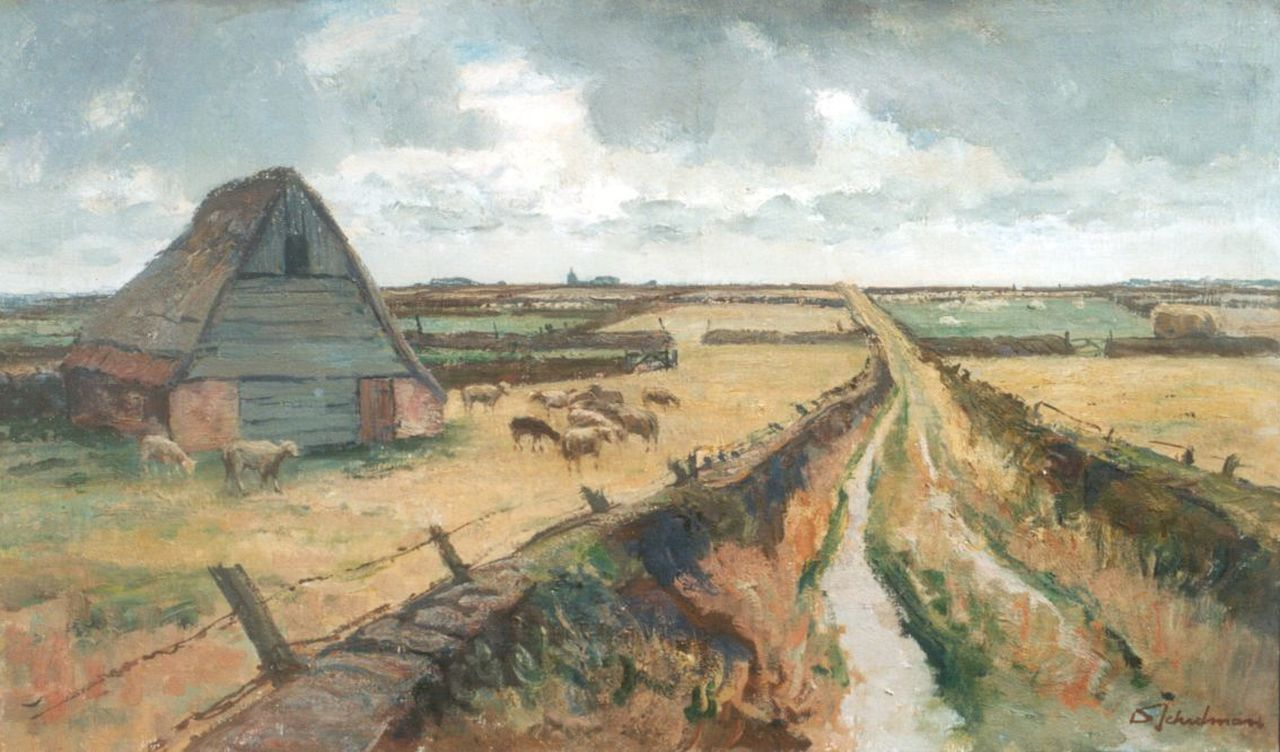Schulman D.  | David Schulman, A country road, Texel, oil on canvas 60.0 x 100.2 cm, signed l.r.