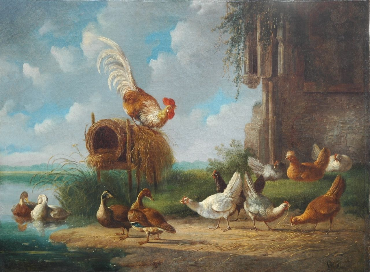 Verhoesen A.  | Albertus Verhoesen, A rooster with chickens and ducks at the waterside, oil on canvas 34.7 x 46.5 cm, signed l.r.