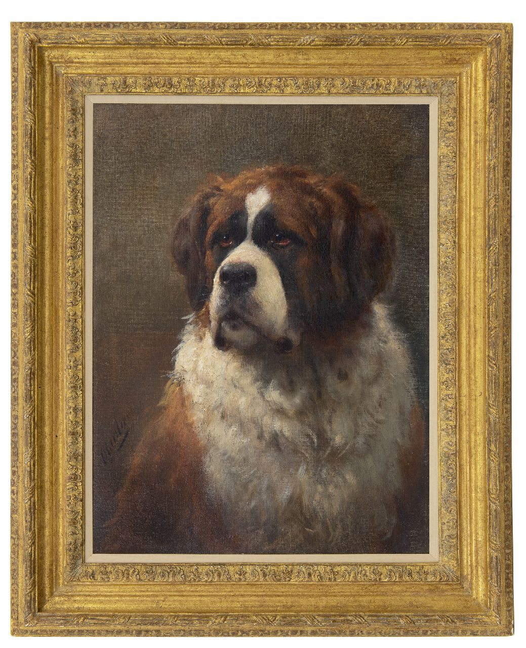 Eerelman O.  | Otto Eerelman | Paintings offered for sale | Portrait of a Saint Bernard, oil on canvas 60.4 x 46.0 cm, signed l.l.