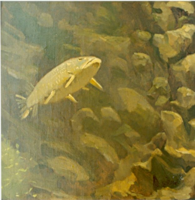Gerrit Willem Dijsselhof | Pike perch, oil on canvas, 35.5 x 35.5 cm, signed l.c.