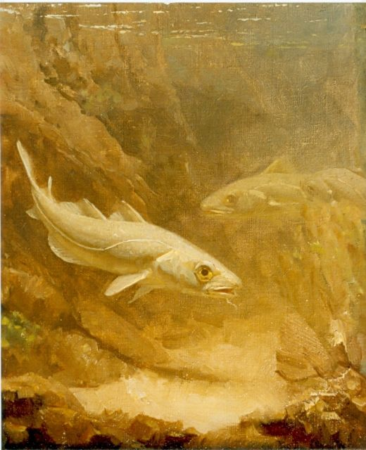 Gerrit Willem Dijsselhof | Cod, oil on canvas, 24.0 x 20.0 cm, signed with monogram. l.o.