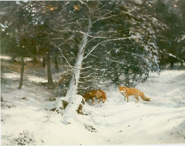 Rien Poortvliet | Foxes in a snow-covered landscape, oil on canvas, 60.5 x 80.0 cm, signed l.r.