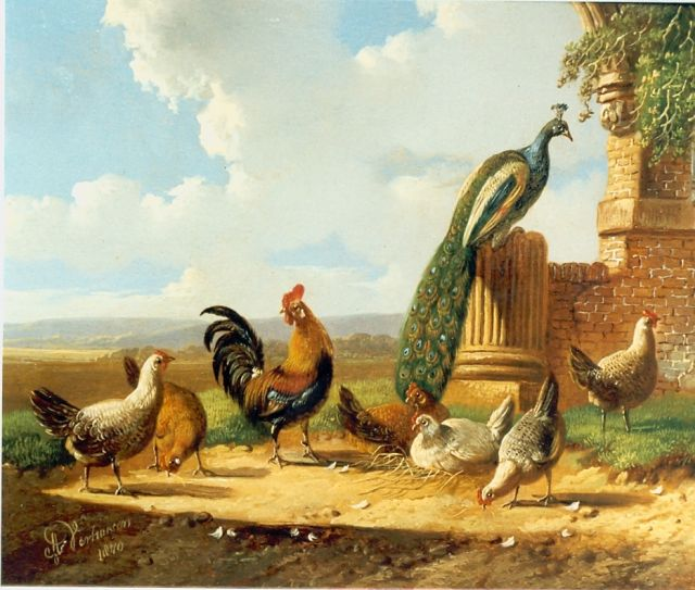 Albertus Verhoesen | Poultry on a yard, oil on canvas, 13.6 x 17.0 cm, signed l.l.