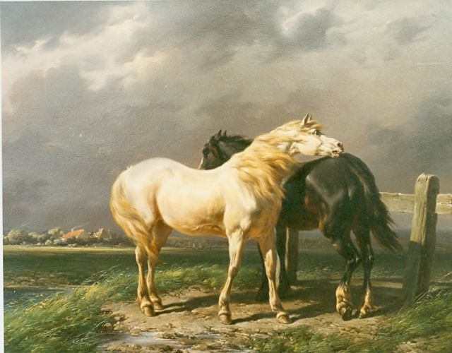 Wouterus Verschuur | Horses in a meadow, oil on panel, 28.0 x 36.0 cm, signed l.r.