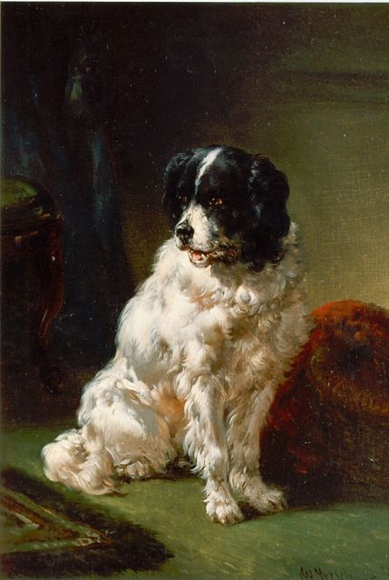 Wouterus Verschuur | The painter's dog, oil on panel, 20.0 x 15.0 cm, signed l.r.