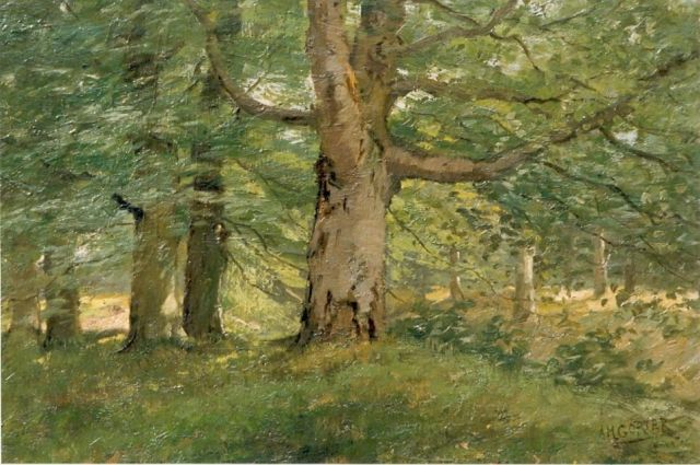 Arnold Marc Gorter | Forest, oil on canvas, 43.5 x 62.0 cm, signed l.r.