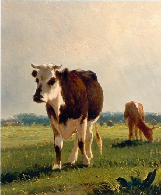 Cornelis Westerbeek | Cows in a meadow, oil on panel, 29.6 x 25.2 cm, signed l.r.