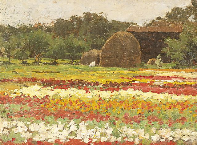 Anton L. Koster | Bulb fields, oil on canvas laid down on board, 29.3 x 39.1 cm, signed l.r.