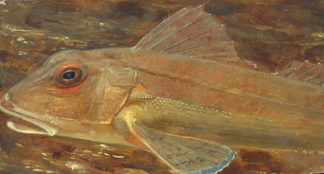 Gerrit Willem Dijsselhof | A gurnard's head, oil on panel, 10.7 x 19.4 cm, signed l.r. with monogram