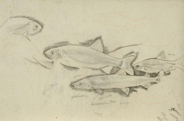 Gerrit Willem Dijsselhof | Study of trouts, black chalk on paper, 26.5 x 40.1 cm