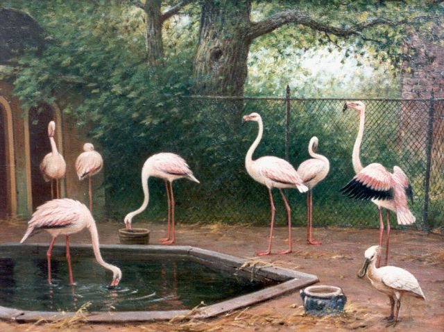 Marinus Adrianus Koekkoek II | Flamingos, oil on canvas, 51.0 x 64.3 cm, signed l.r. and dated 1909