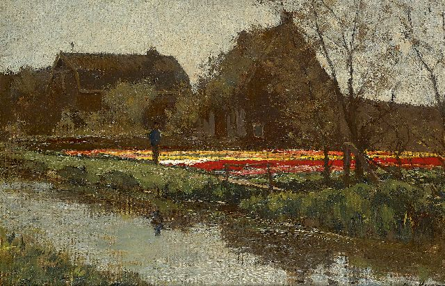 Anton L. Koster | Tulip fields in spring, oil on canvas laid down on board, 29.8 x 43.7 cm, signed l.r.