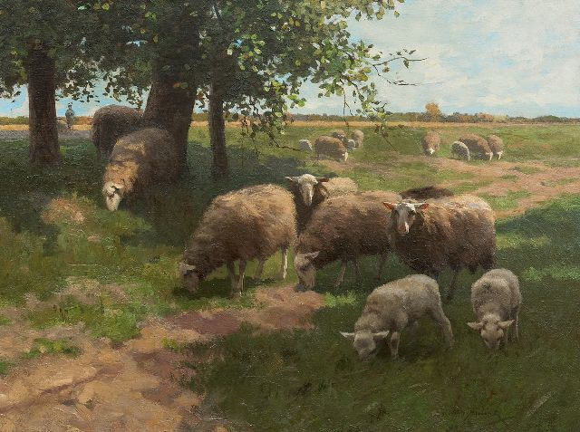 Willem Steelink jr. | Grazing sheep, oil on canvas, 50.3 x 66.3 cm, signed l.r.
