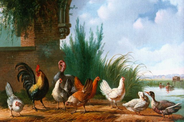 Albertus Verhoesen | Poultry on the riverbank, oil on canvas, 34.3 x 46.0 cm, signed l.l. and dated 1863