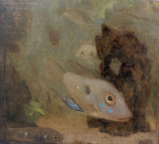 Gerrit Willem Dijsselhof | Globefish, oil on canvas laid down on panel, 17.6 x 18.5 cm, signed l.l.