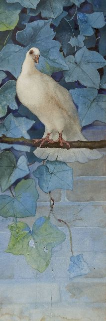 Beb Reith | Pigeon  (Daytime), watercolour on paper, 66.0 x 23.0 cm, signed on the reverse