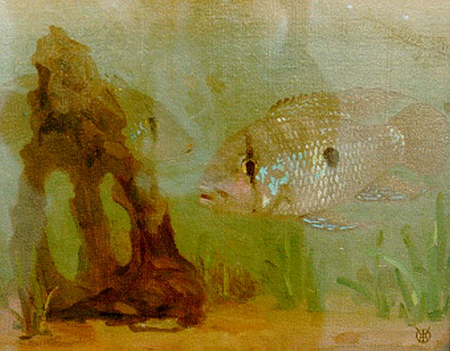 Gerrit Willem Dijsselhof | A fish, oil on canvas, 23.6 x 30.0 cm, signed l.r. with monogram