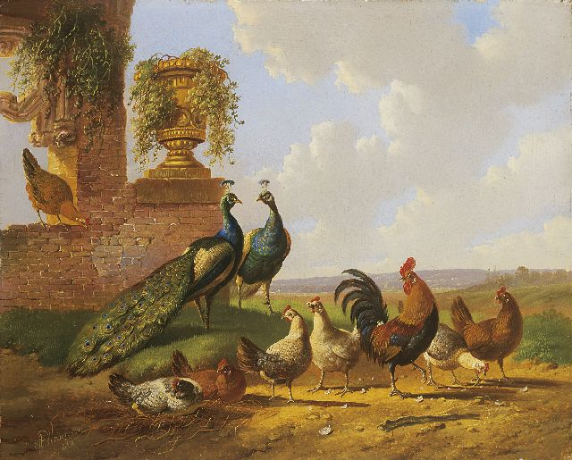 Albertus Verhoesen | Peacocks and chickens by a ruin, oil on panel, 30.3 x 37.5 cm, signed l.l. and painted 1870