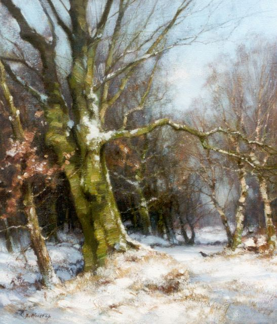 Jan Holtrup | Winter in the Wolfheze forest, oil on canvas, 40.4 x 35.7 cm, signed l.l.