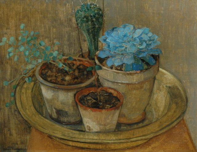Herman Vreedenburgh | A still life with cactusses, oil on canvas, 40.7 x 51.5 cm, signed l.l. and dated 1922