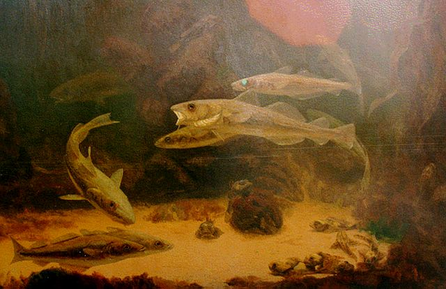 Gerrit Willem Dijsselhof | Fish in an aquarium, oil on canvas, 81.0 x 120.5 cm, signed l.l.