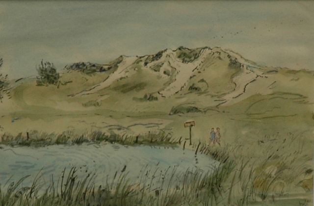 Harm Kamerlingh Onnes | In the dunes, Terschelling, pen, ink and watercolour on paper, 17.5 x 25.5 cm, signed l.r. with monogram and dated '71