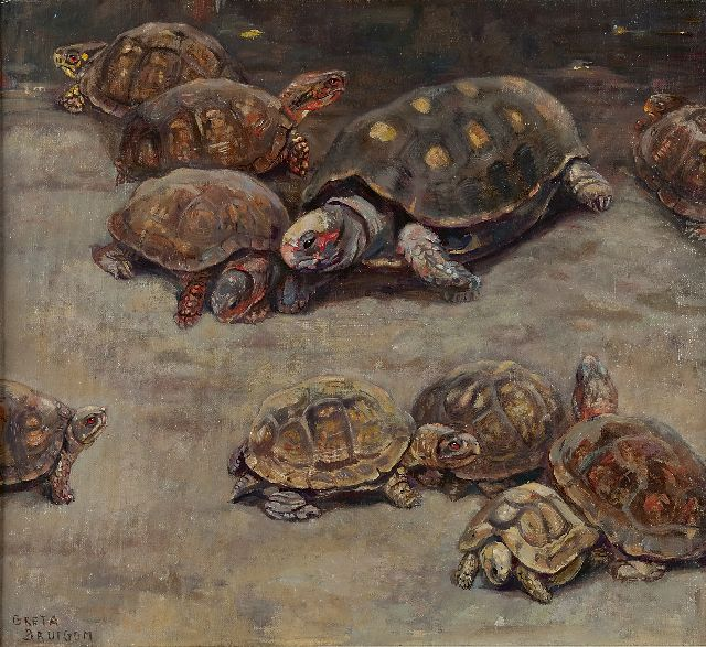 Greta Bruigom | Turtles, oil on canvas, 47.7 x 52.5 cm, signed l.l.