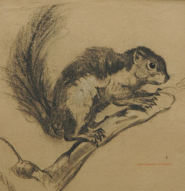 Greta Bruigom | Chipmunk, black chalk on paper, 30.8 x 30.6 cm, signed l.r. with artist's stamp