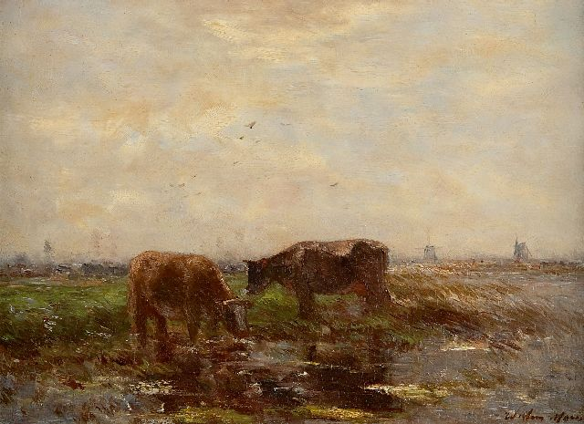 Willem Maris | Two grazing cows in a polder landscape, oil on panel, 24.1 x 32.6 cm, signed l.r.