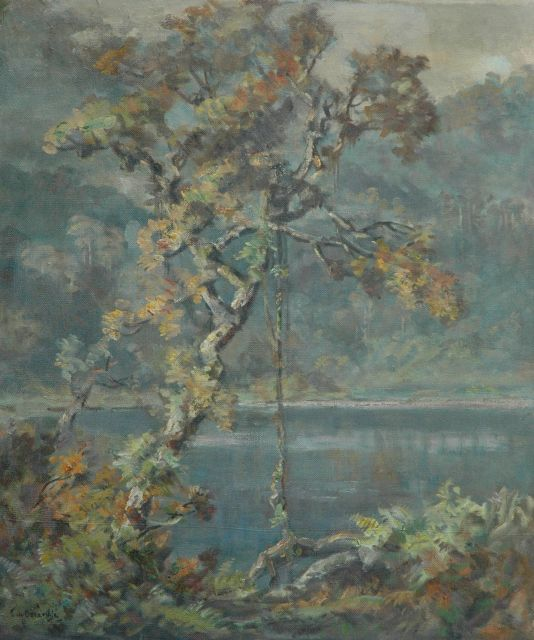 Ernest Dezentjé | A lake near Bandung, Indonesia, oil on canvas, 70.0 x 59.9 cm, signed l.l.