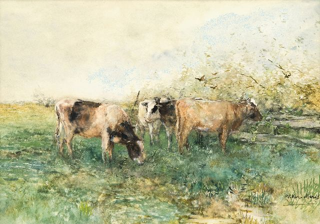 Willem Maris | Grazing cattle, watercolour and gouache on paper, 41.4 x 57.8 cm, signed l.r.