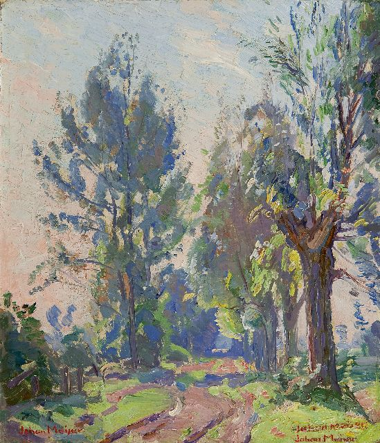 Johan Meijer | Trees along a path, oil on painter's board, 26.6 x 23.2 cm, signed l.l. and 2 x  l.r.