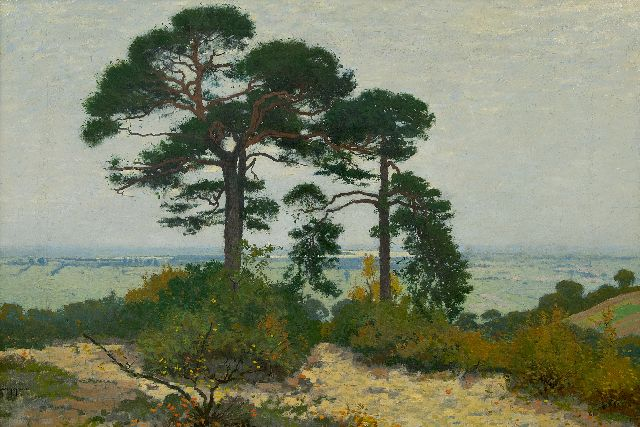 Derk Wiggers | A view of the Ooipolder with pinetrees, oil on canvas, 51.3 x 73.3 cm, signed l.l
