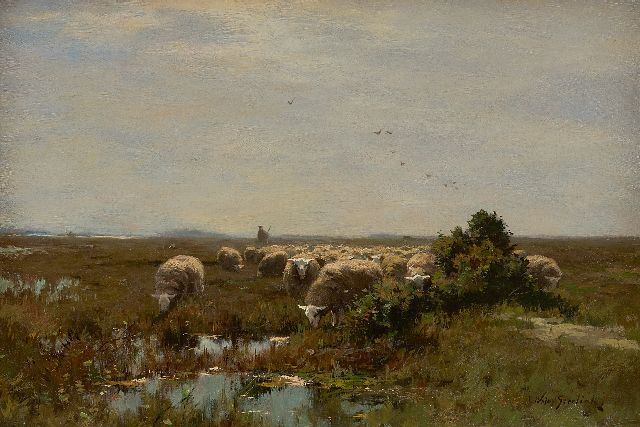 Willem Steelink jr. | Grazing sheep on the heathland, oil on canvas, 33.1 x 48.0 cm, signed l.r.
